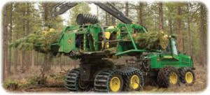 deere_forest1